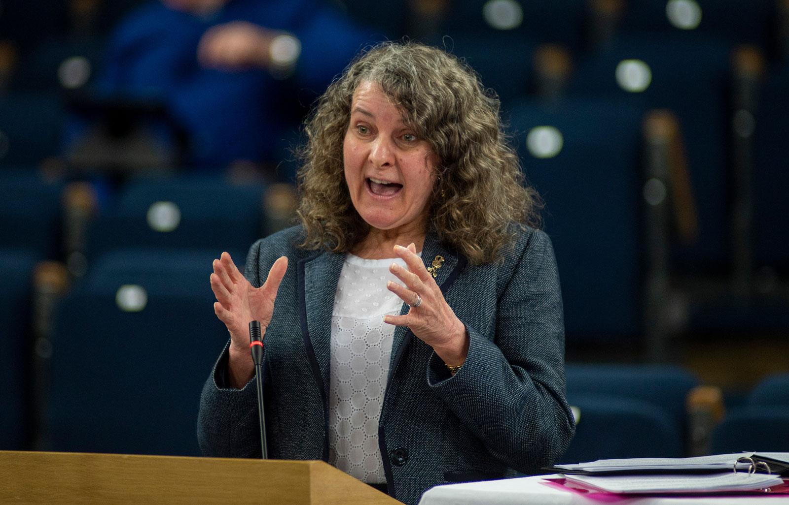 Rev Rosemary Frew speaking