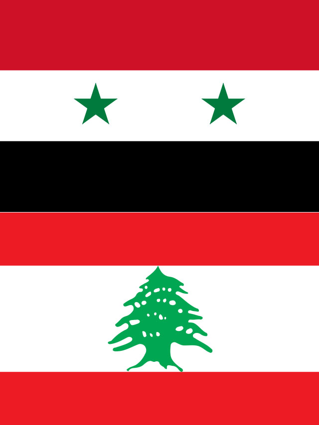 Flag of Syria and Lebanon